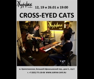 Воскресный блюз: CROSS-EYED CATS